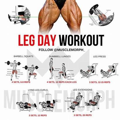Workouts Musclemorph Workout Leg Exercises Gym Training