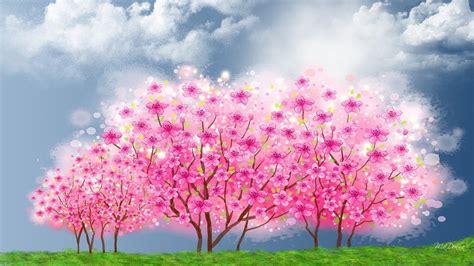 bunga sakura wallpaper  image collections  wallpapers