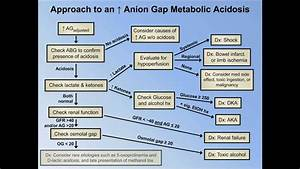 Elevated Anion Gap Metabolic Acidoses