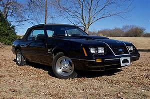 Immaculate Collection of Every Year Fox-Body Mustang Heads to Auction