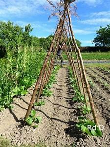 Comment Tuteurer Les Tomates : artiste jardinier ou jardinier artiste rouge d 39 orient ~ Melissatoandfro.com Idées de Décoration