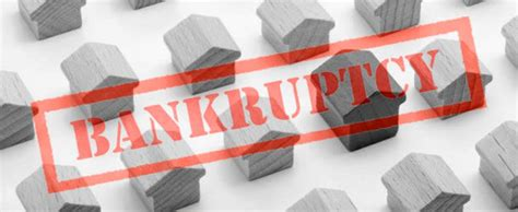 bankruptcy definition process chapters  bankrupt