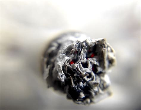 Effects Of Smoking Marijuana On The Human Brain: Drug