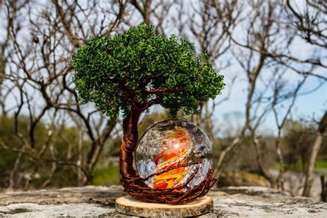 Ponderosa Tree Life With Burning Bush Bubble Flame Orb
