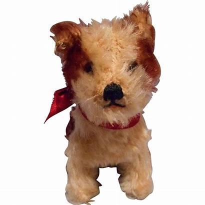 Steiff Dog Molly Mohair Lane