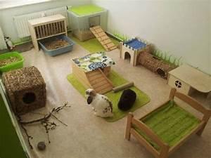 Maison Pour Lapin : voici 20 id es pour faire un cocon trop mignon vos ~ Premium-room.com Idées de Décoration