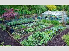 Good enough to eat Grow vegetables that will add colour
