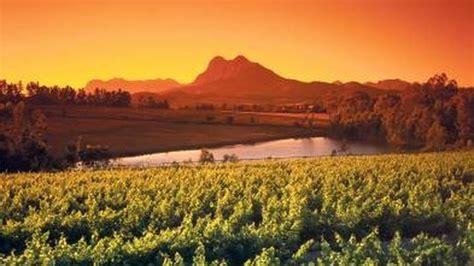 Dienvidāfrikas vīni