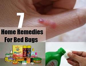 7 home remedies for bed bugs home remedies natural remedy With bed bug relief