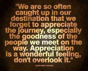 Appreciation is a wonderful feeling life quotes quotes ...