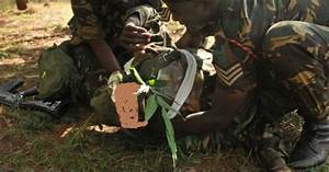 Mulanje villagers beat up Malawi army soldier over trees ...
