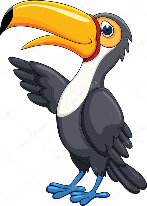 toucan bird cartoon stock vector  dagadu