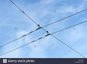 Overhead electric trolley wires Stock Photo, Royalty Free ...