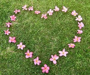 Blumen Der Liebe : aloha lichtregenbogen ~ Orissabook.com Haus und Dekorationen