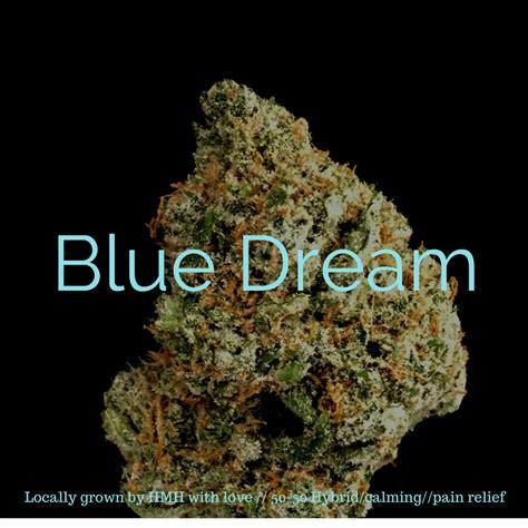 Hmh Strain Reviews Blue Dream  High Mountain Health