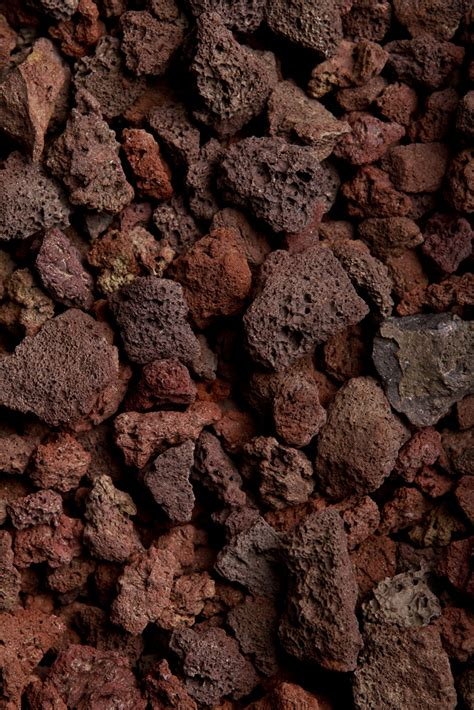 decorative rock las vegas book of stefanie