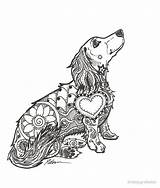 Dachshund Coloring Zentangle Pages Long Doxie Lovers Tattoo Haired Dog Redbubble Mandala Chihuahua Puppy Dachshunds Dapple Baby Puppies Daschund Svg sketch template