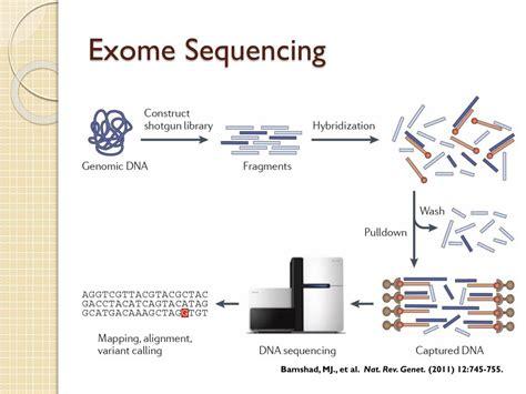 exome sequencing  molecular diagnostic tool