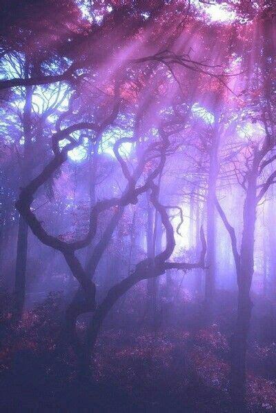 riiteyaet kateyaiamrve violet aesthetic purple