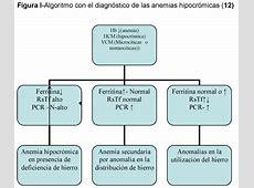 Definicion De Anemia wwwimagenesmicom