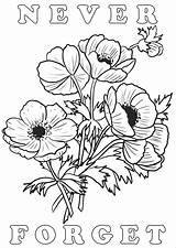 Poppies Lest Remembrance Rooftoppost sketch template