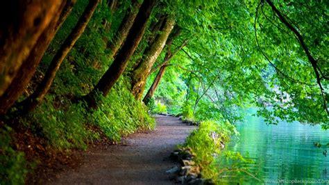 Nature Wallpapers High Resolution Free Download,desktop