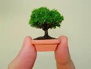tiny dollhouse bonsai tree in a handmade clay pot by marktduk on deviantart