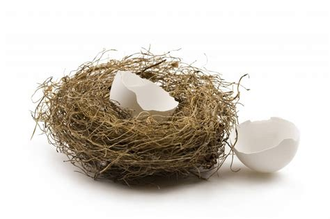 Nest Syndrom by How I M Coping With An Empty Nest