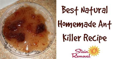natural homemade ant killer recipe