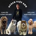 Thanh niên 62kg chưa spa sờ peo gì... - Pets King Viet Nam