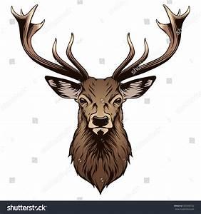 Deer Head Illustration Stock Vector 302066732 - Shutterstock