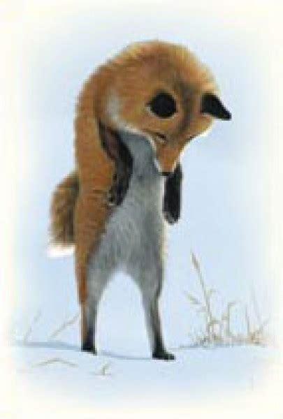 fuchs im winter postkarten naturbuecher und mehr
