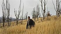 Father (2020) directed by Srdan Golubović • Reviews, film ...