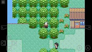 Pokemon Emerald Cheats Pokemon Emerald Gameshark Codes