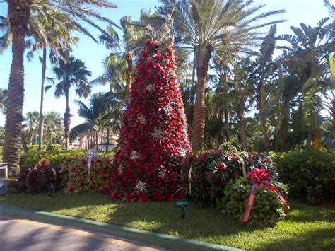 bahamas christmas decorations pin by sandberg on the bahamas tropical
