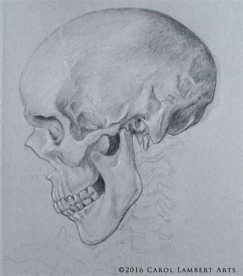 Flower Skull Skulls Art