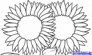 Simple Sun Flowers To Draw