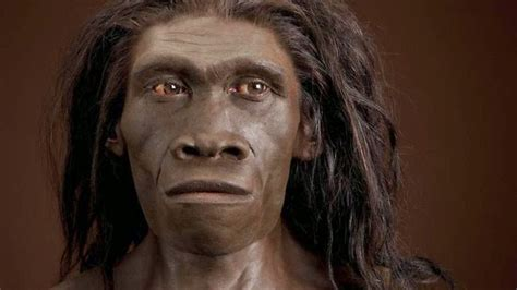 Australian Aborigines Hair by The Of A 300 Ky H Erectus Patagonian Monsters