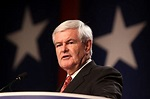 Newt Gingrich burned to the ground for daring to compare ...