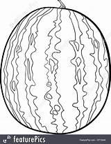 Watermelon Coloring Fruit Cartoon Illustration Featurepics sketch template