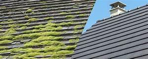 Demoussage Toiture Ardoise d moussage toiture nantes entretien toiture loire renovation