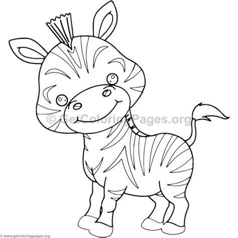 cute baby zebra animal coloring pages getcoloringpagesorg