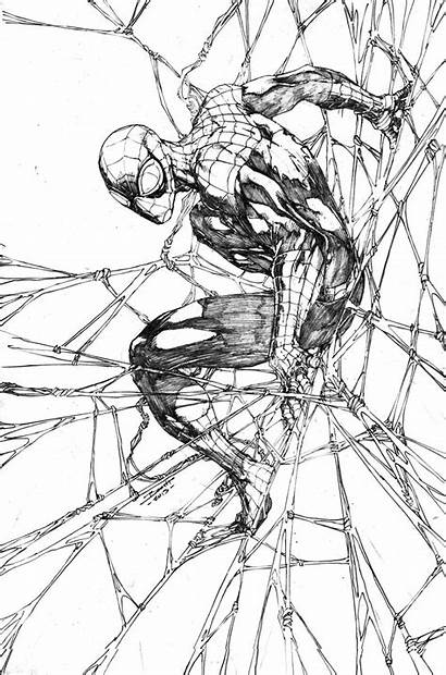 Spiderman Booth Brett Spider Sketch Awesome Marvel