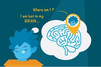 Explain Brains Littlelives Child Does Wonder