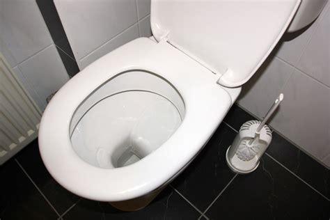 toilette reinigen urinstein toilette reinigen 8 tipps zum kalk und urinstein entfernen