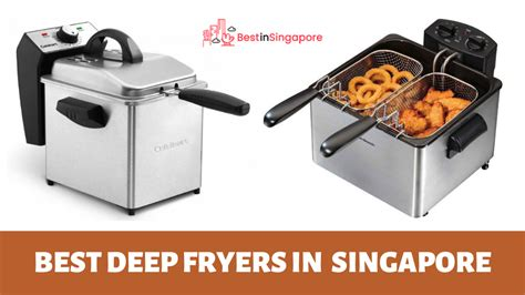 deep singapore fryers fryer want fried