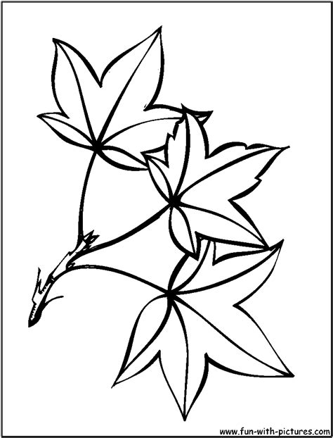 Coloring Leaves by Leaves Coloring Pages Free Printable Colouring Pages For