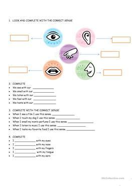esl  senses worksheets