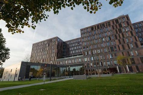 duales studium frankfurt frankfurt school of finance management wegweiser