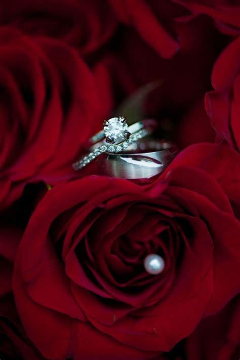 ring shot idea red roses wedding engagement